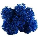 Lichen scandinave bleu