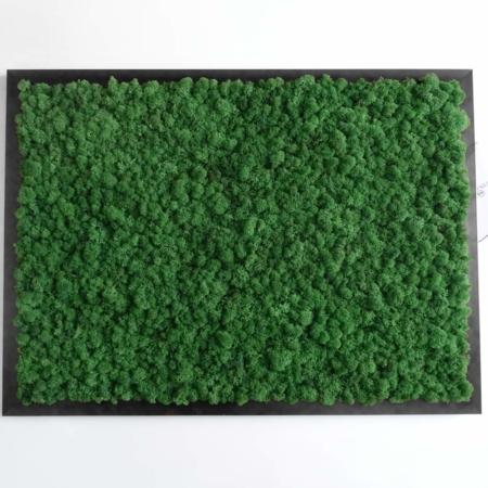 """Tableau végétal stabilisé <br><span class=""""titre-produit-span-vert-tropical"""">Vert Tropical</span>"""