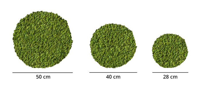 Cercle végétal