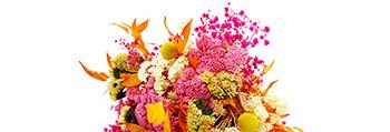 choix-bouquet-fleurs-stabilisees