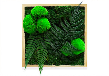 choix-tableau-vegetal