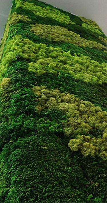 Colonne végétale