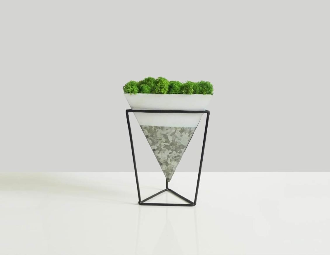 """Cornet de mousse <br><span class=""""titre-produit-span-autres"""">décoration végétale</span>"""