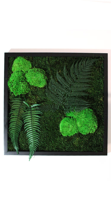 Tableau végétal Forest