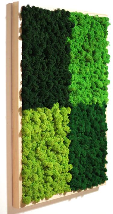 Tableau végétal Multicouleurs