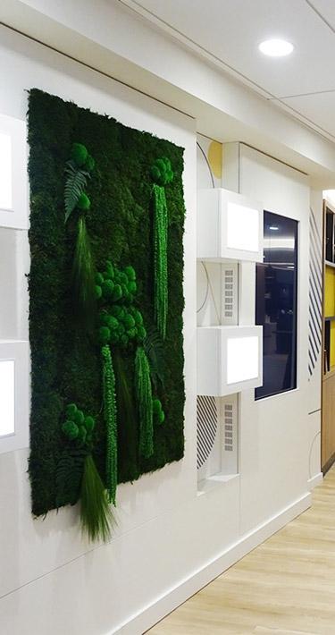 Mur végétal pour une cantine