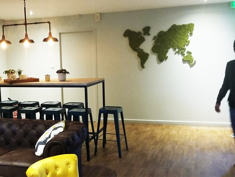 Original Moss: Indoor vegetation & Moss decoration