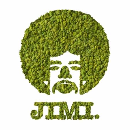 JIM végétal en lichen scandinave naturel & stabilisé