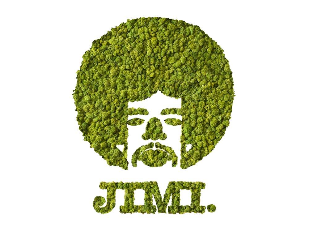 JIMI végétal en lichen naturel & stabilisé