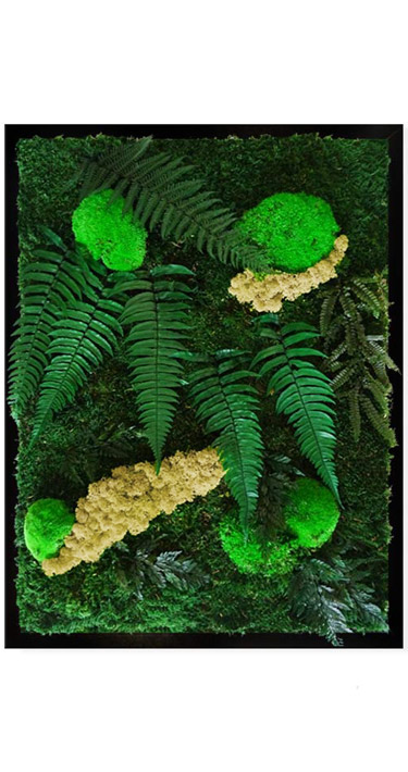 Tableau végétal Jungle