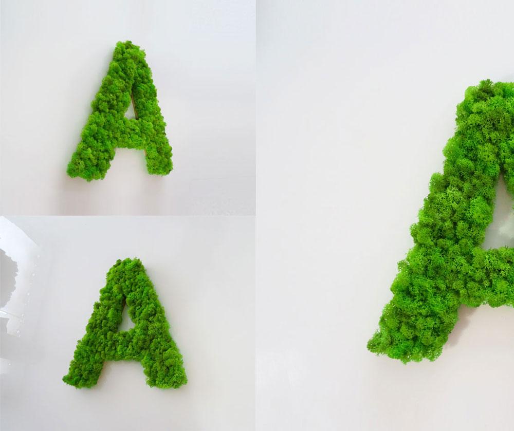 Lettre végétale