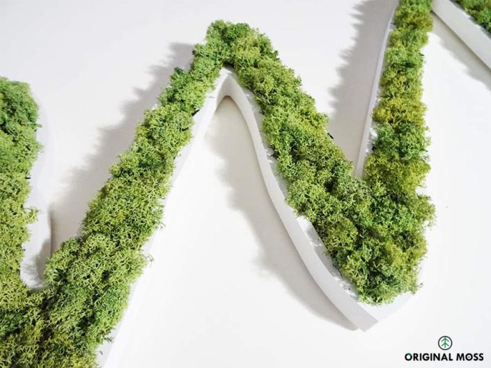 Zoom sur un logo végétal personnalisé