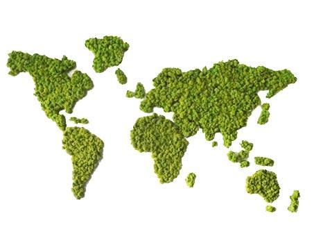map monde végétal stabilisé