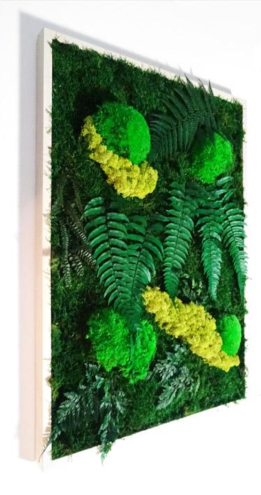 """tableau végétal style """"jungle"""""""