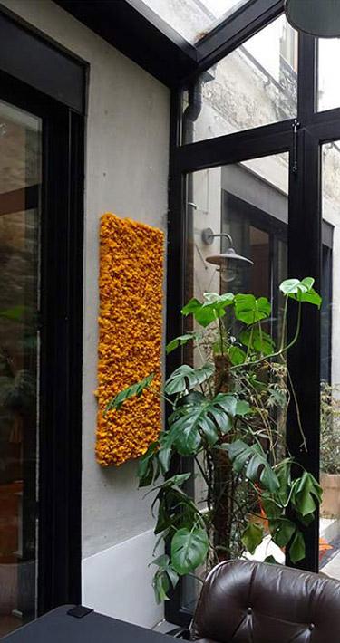 Mur végétal pour des locaux