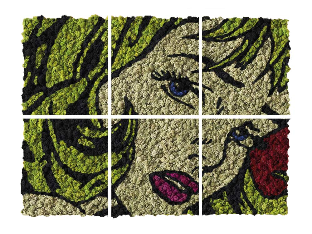 Pop Art végétal en lichen
