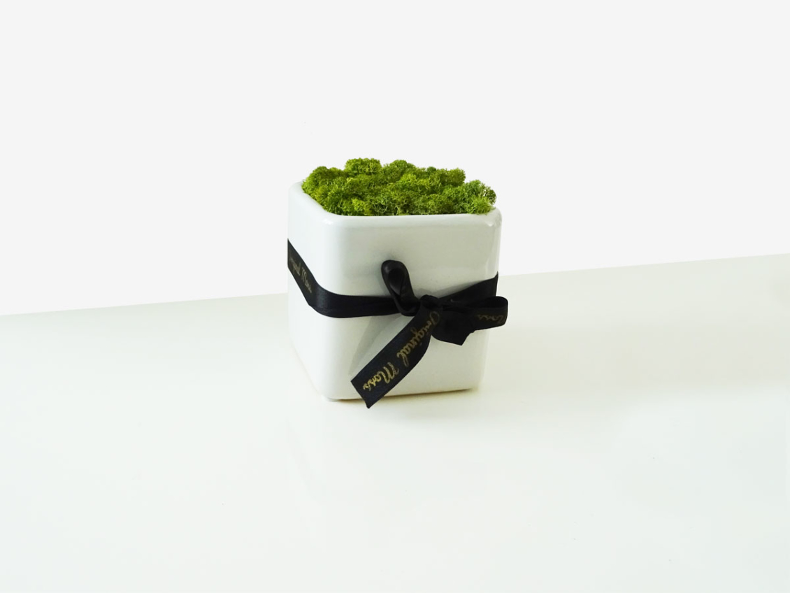 """Pot Déco<br><span class=""""titre-produit-span-autres"""">rempli de mousse stabilisée</span>"""