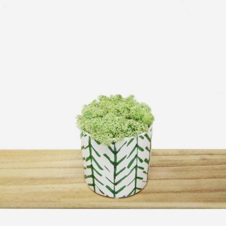 Pot design avec mousse stabilisée