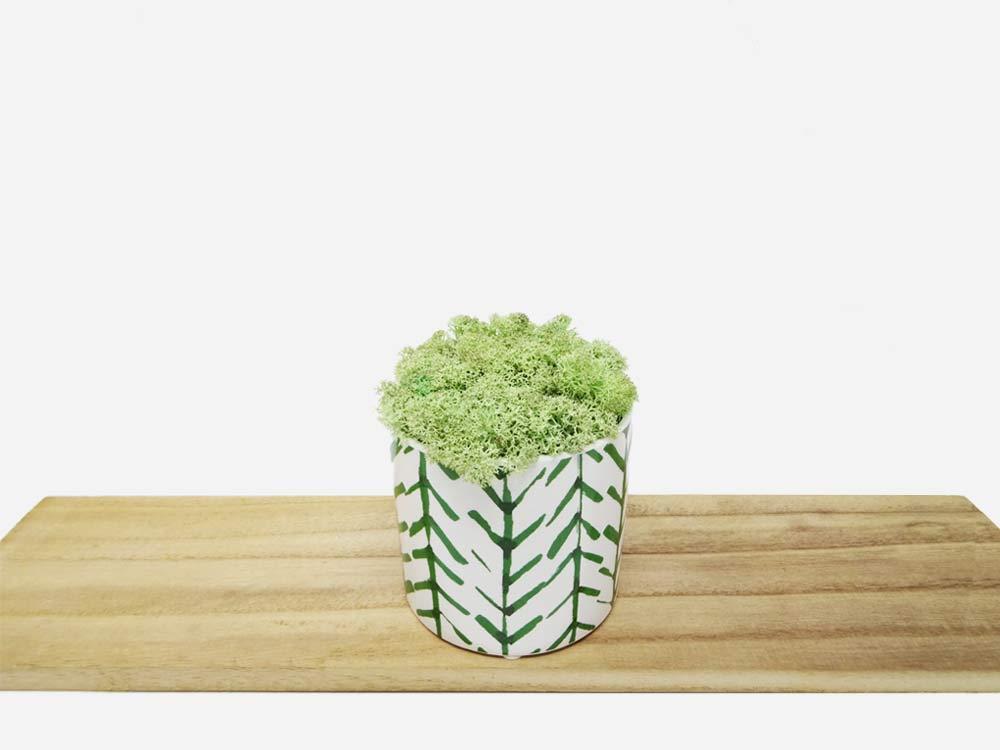 Pot à motifs lichen