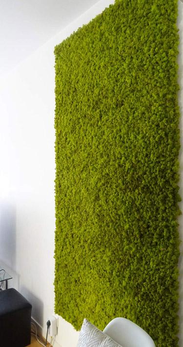 Mur végétal pour une salle d'attente