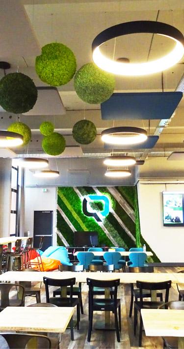 Mur végétal dans des bureaux