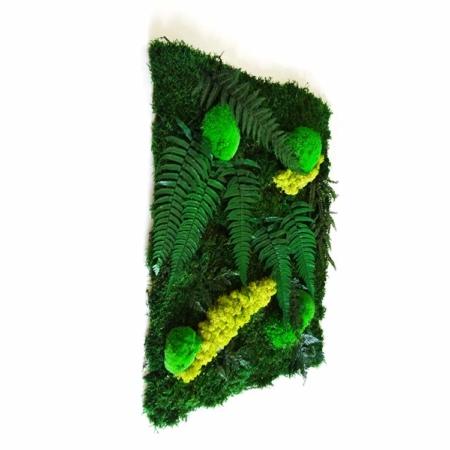 Tableau végétal Jungle - mousse et plantes stabilisées