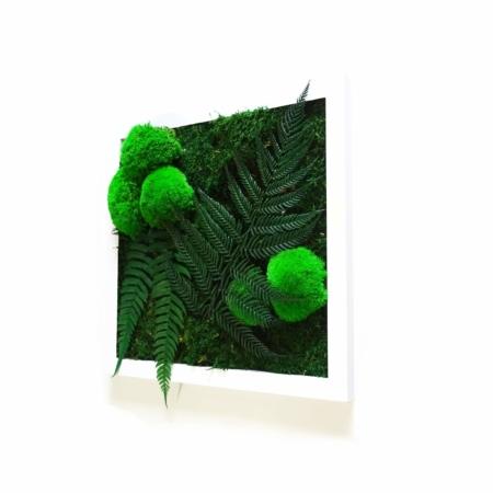 Tableau végétal Little Forest - mousse et plantes stabilisées
