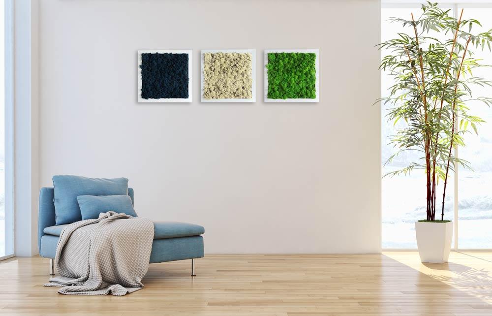 Cadre végétal - Mini (23x23cm)