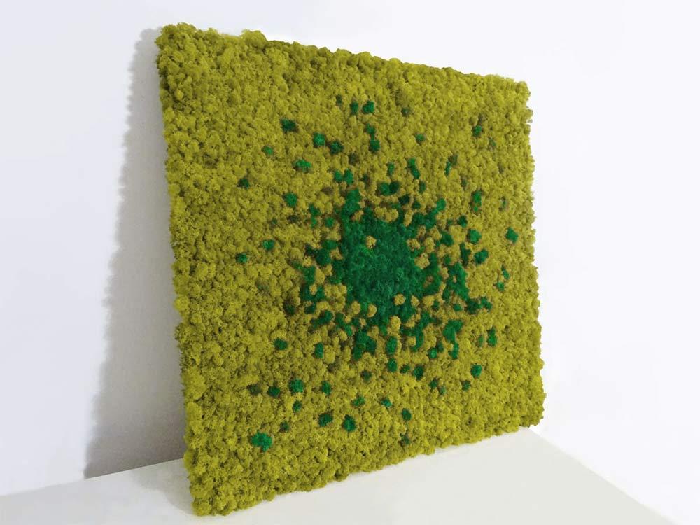 Tableau végétal lichen Cosmos