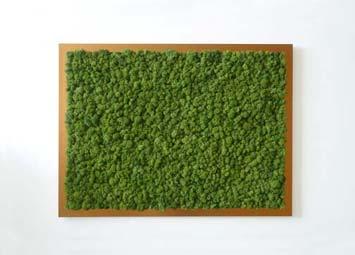 tableau v g tal stabilis sans entretien design d 39 int rieur original moss. Black Bedroom Furniture Sets. Home Design Ideas