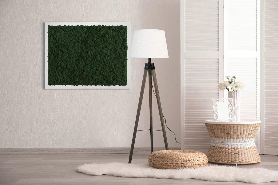 Moss frame | Preserved lichen