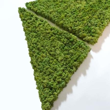 Triangle végétal