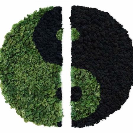 Yin Yang végétal en lichen scandinave naturel & stabilisé