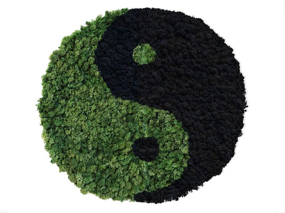 Yin Yang végétal